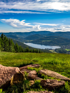 Schwarzwald mit Blick auf den Titisee