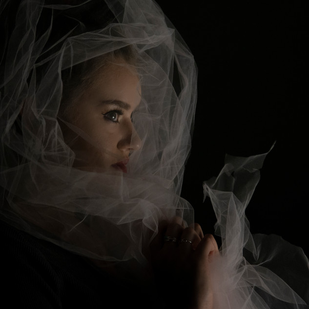 Profile of Sarah with Tulle