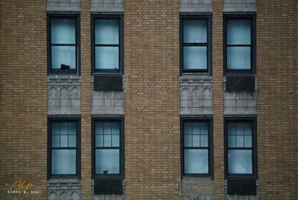 NYC _The Watcher.jpg