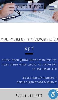 ג'וינט ישראל-תבת, מנטורינג | תיק עבודות