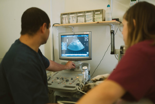 דוקטור אשר זפרני ואור הטכנאית מבצעים סריקת אולטרסא