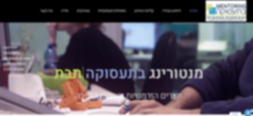 ג'וינט ישראל-תבת, מנטורינג - תיק עבודות