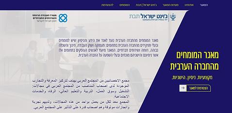 מאגר מומחים מהחברה הערבית | תיק עבודות