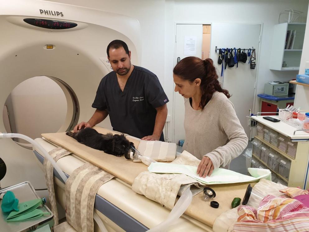 דוקטור אשר ורותם הטכנאית מבצעים סריקת CT
