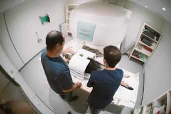 דוקטור אשר וחן הטכנאי ממקמים כלב לסריקת MRI.