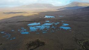 Protecting Ireland's Oligotrophic Lakes