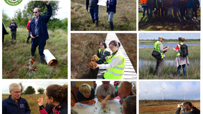 Peat fans, why not join the Irish Peatland Society?
