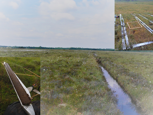 AUGER - How peatland properties influence Irish greenhouse gas emissions & removal