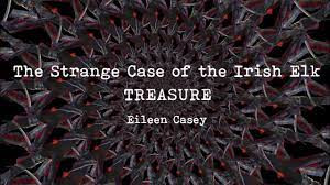 Treasure - Bog Poetry by Eileen Casey, captured on film