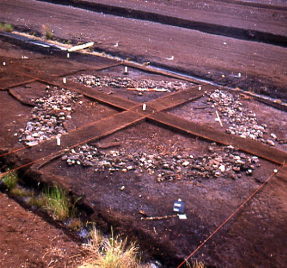 Marked out square on brown bog with pale stones visible in a circle