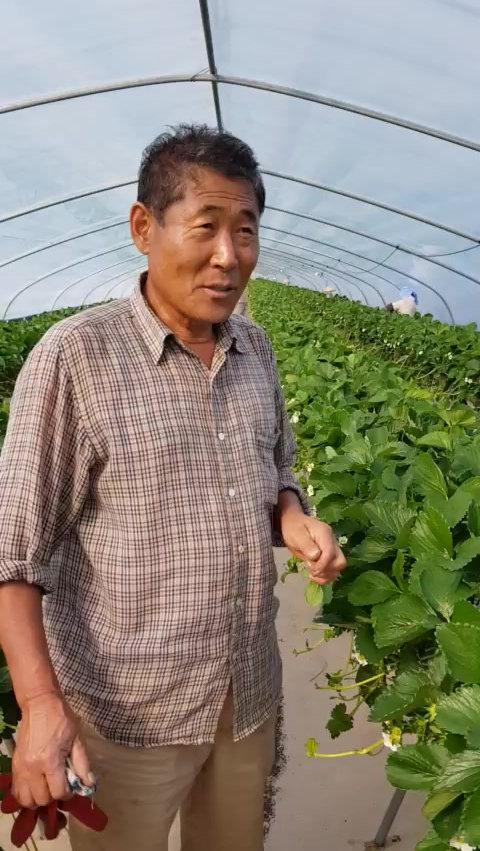 빈파워 사용농가 인터뷰
