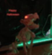 IMG_9328_edited_edited.png