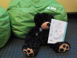 Bear Loves To Read