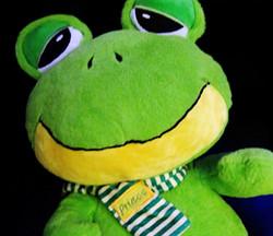 Prince the Frog