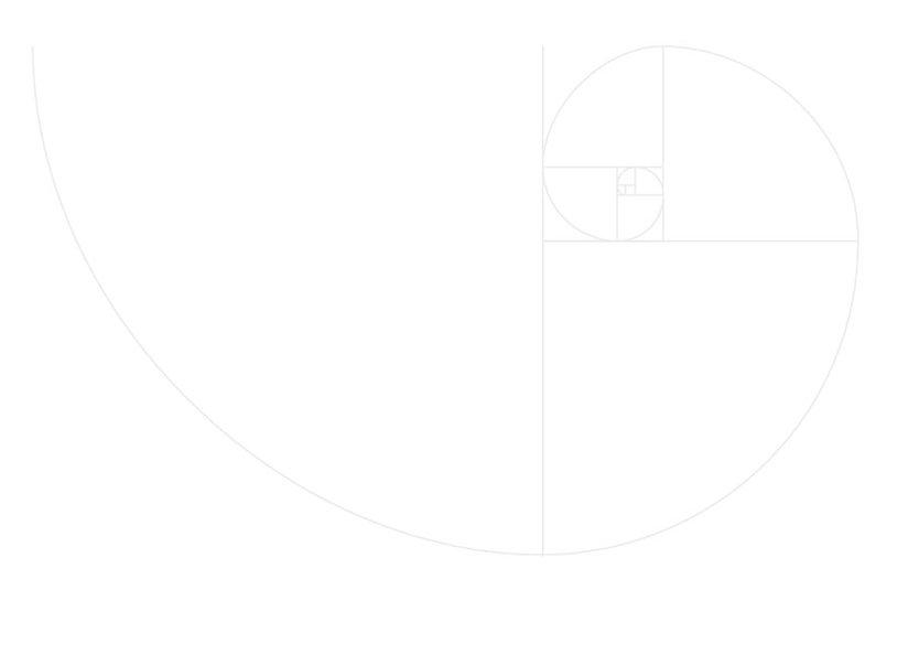 Fibonnacci-curve-web.jpg