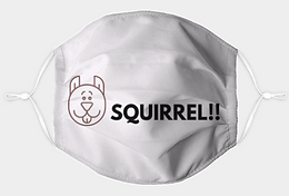 SquirrelFaceMask.png