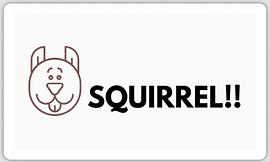 SquirrelSticker.png