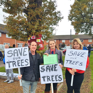 Supporting the Save the Ely Gardens Oak Trees Campaign