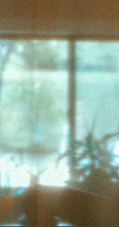 Screen Shot 2021-05-04 at 12.25.51 AM.pn