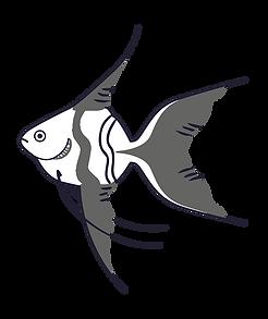 003 - School of Fish-01.png
