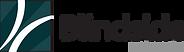 blindside networks 2020 logo.png