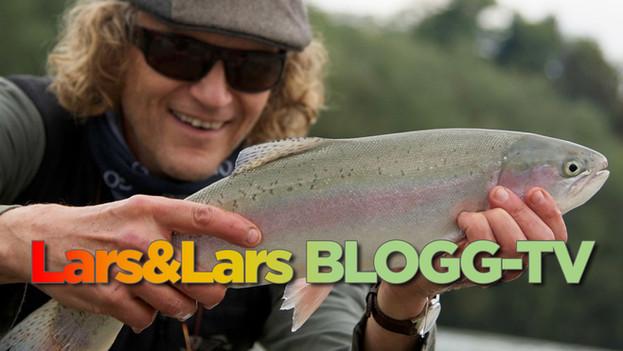 Lars & Lars