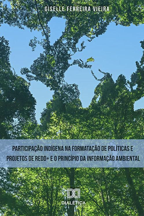Participação indígena na formatação de políticas e projetos de REDD+