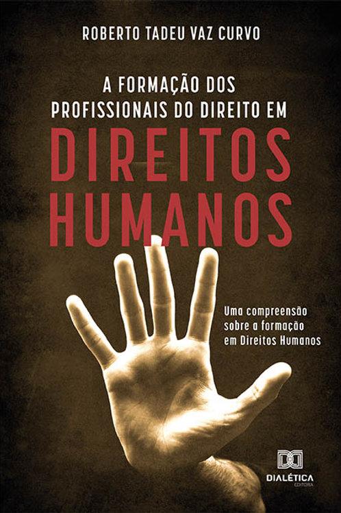 A formação dos profissionais do direito em direitos humanos
