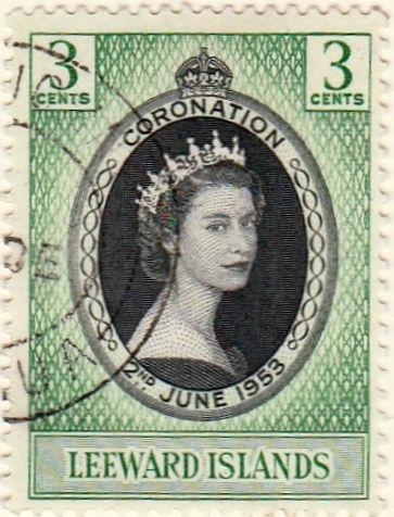 Leeward Coronation.jpg