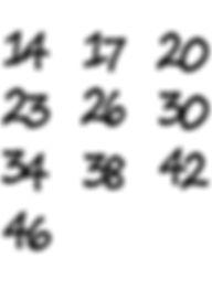 HAYABUSA-IRON-刻印訂正版.jpg