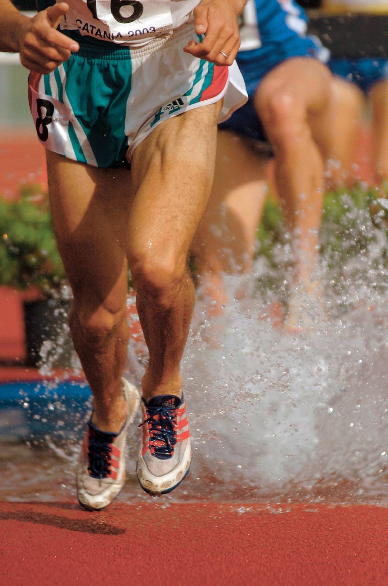 runners-legs-583948