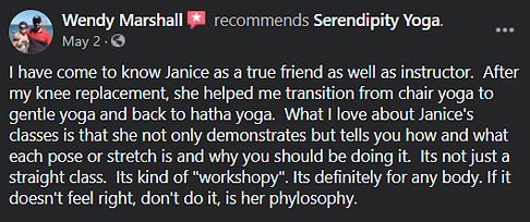 serendipity-review-WM.png