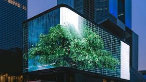 [Overview] Special Events: 미디어아트 프로젝트 당산나무