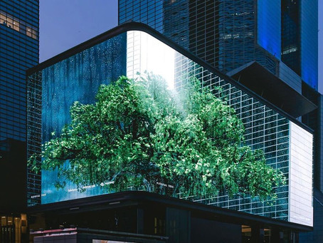 [Overview] Special Events: 미디어아트프로젝트 당산나무