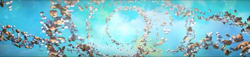 오월, 별이 된 들꽃