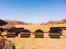 Wild Wadi Rum Camp #wildwadirum