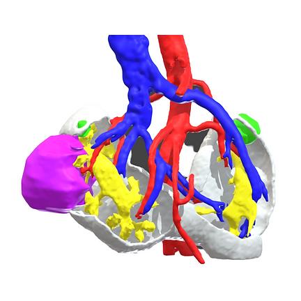 Modelo 3D Virtual