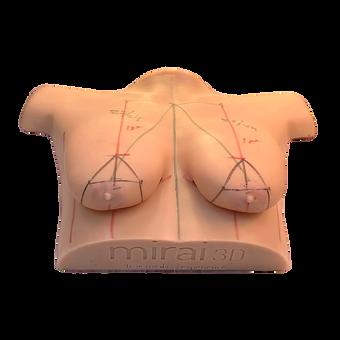 Simulador mamario.png