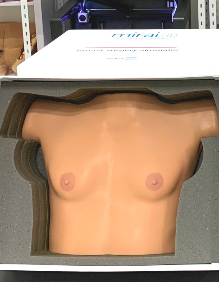 Simulator for training in breast surgery