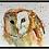 Thumbnail: ART PRINT - 'OWL'  fine art print by contemporary artist Hilary Payne