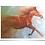 Thumbnail: FINE ART PRINT - 'TO THE FINISH'  fine art print on art paper, galloping horse,