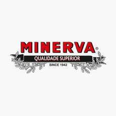 Minerva Logo.jpeg