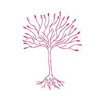 arbres-assos_edited.jpg