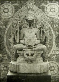 Koala Buddha
