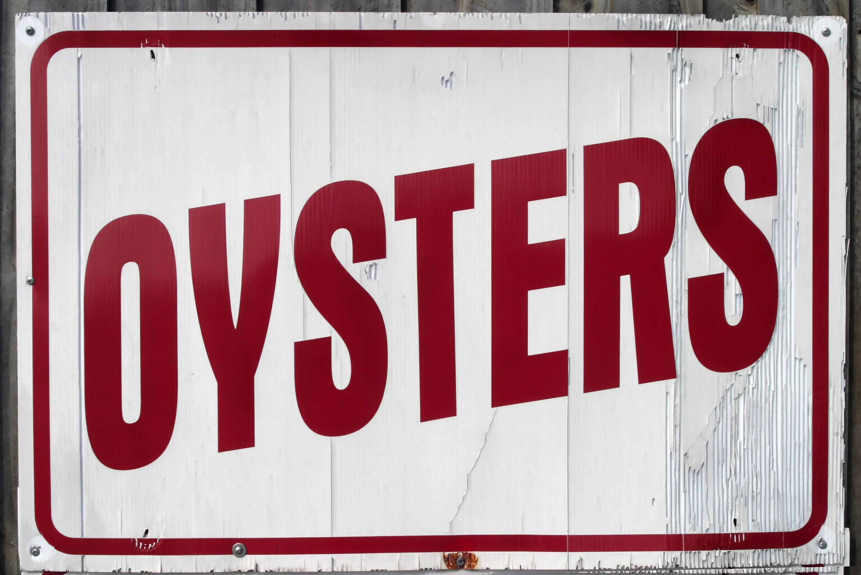 $1.00 OYSTERS