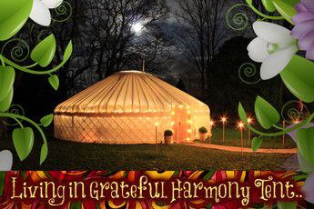 Look out for THE LIGHT - Our Storytelling Yurt.
