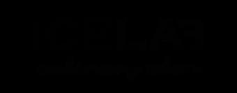 2019 Icelab logo.png