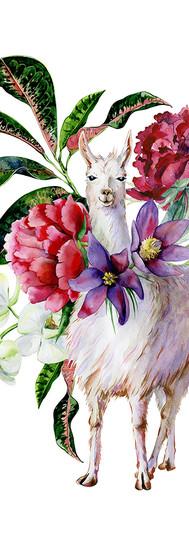 Lux Llama