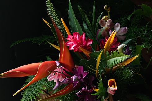 Hawaiian tropical flowers bouquet colour