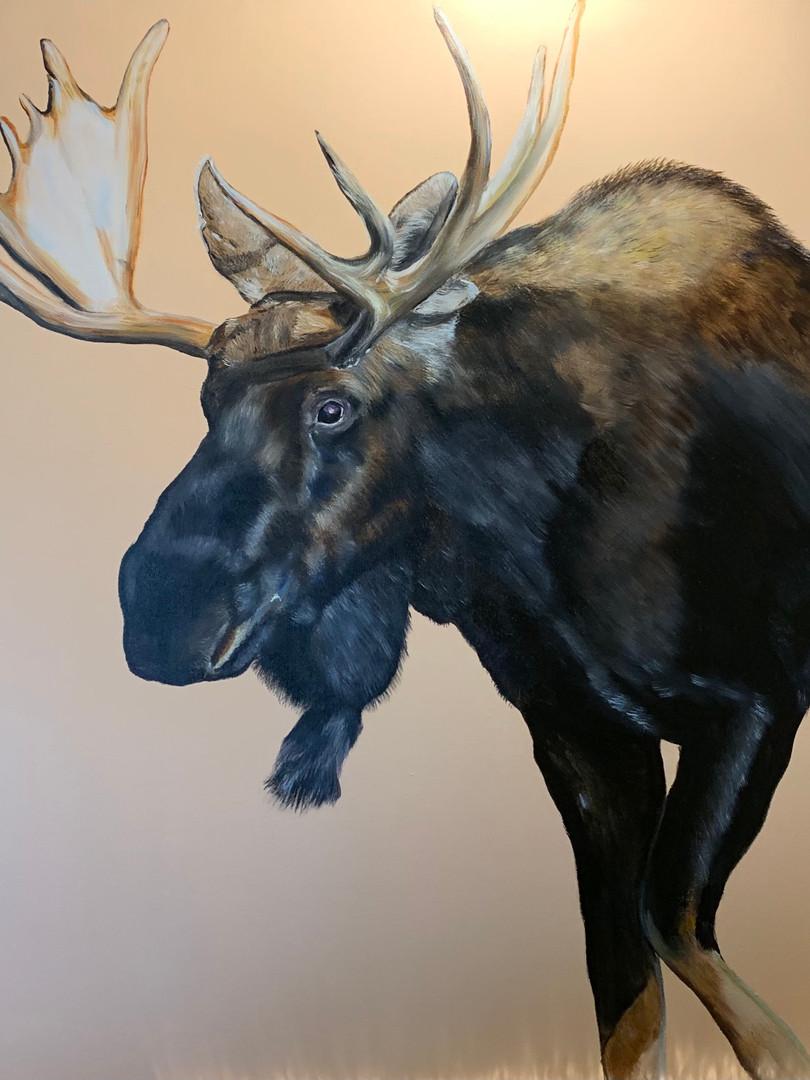 Moose 3x3'.jpg